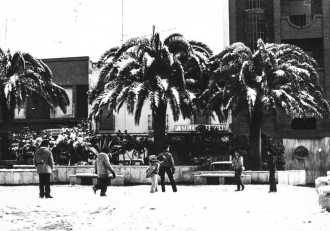 nevada (2)