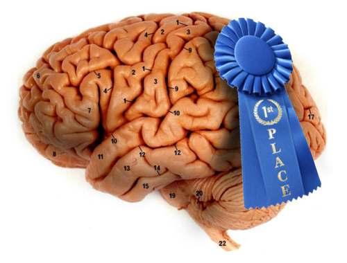 BrainPrize